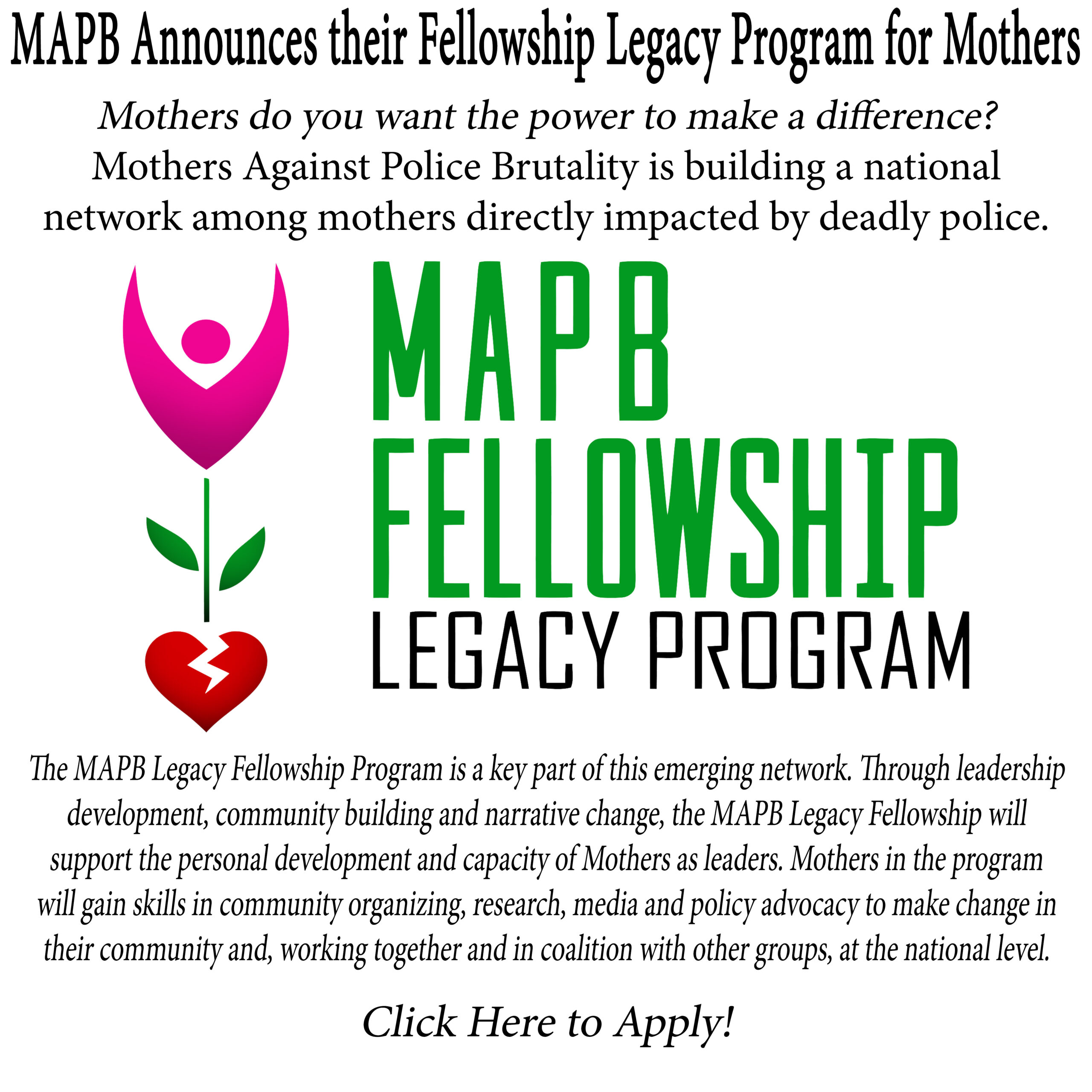 Click here apply to the 2021 MAPB Fellowship Legacy Program